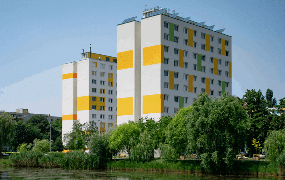 Mosca negra verano 2020