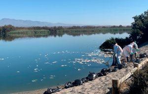 Desastre Natural Mar Menor y Cabo de Gata